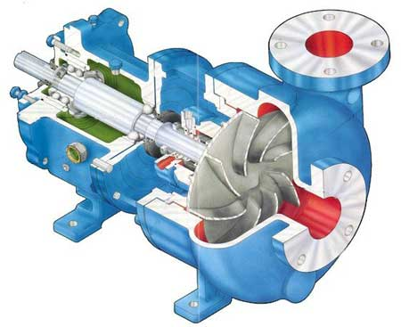 Cross Sectional View of Pump